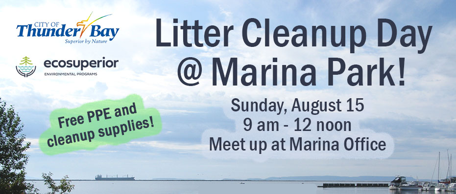 Litter Cleanup poster